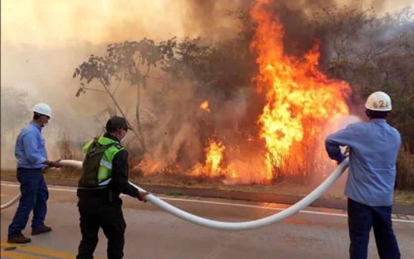 Incendio en la Chiquitanía. Foto: ABI